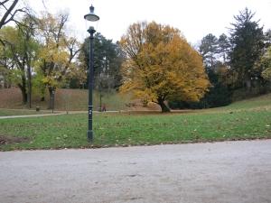LeschetizkyBankHainbucheTürkenschanzpark